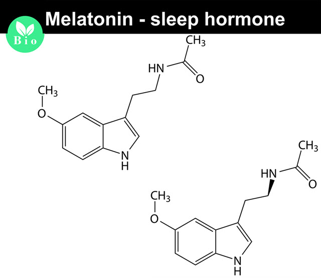 Melatonin.